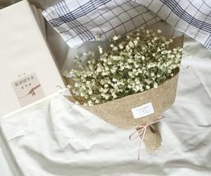 dry flowers image