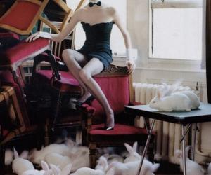 bunny, fashion, and Lisa Cant image