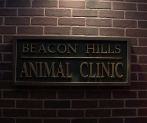 teen wolf, beacon hills, and animal clinic image