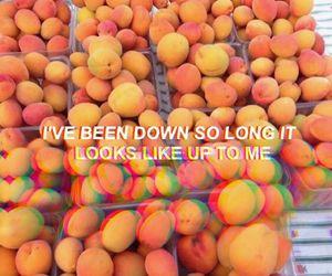 Drake, fruit, and Lyrics image