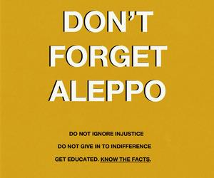 aleppo image
