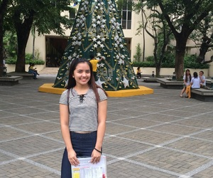 christmas tree, tamaraw, and feu tamaraws image