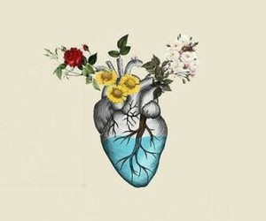flower, water, and heart image