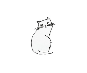 cat, drawing, and black and white image