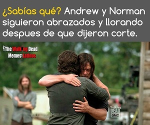 best friends, the walking dead, and norman reedus image