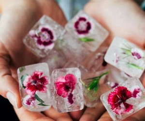 flowers, ice, and art image