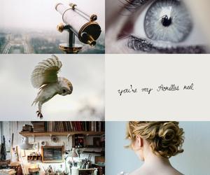 aesthetic, athena, and owl image