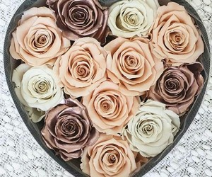 flowers, love, and roses image