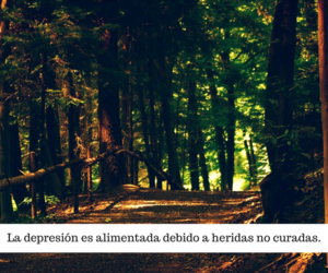frases, quotes, and depresion image