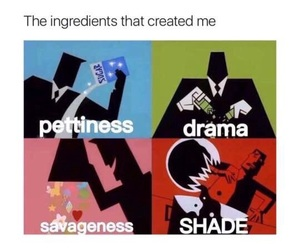 funny, meme, and drama image