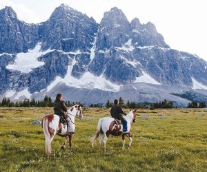 nature, adventure, and horse image