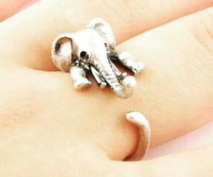 elefante, accesorio, and anillo image
