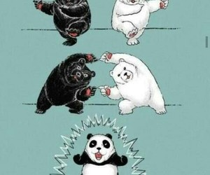 panda, bear, and fusion image