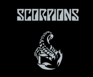 scorpions and rock image