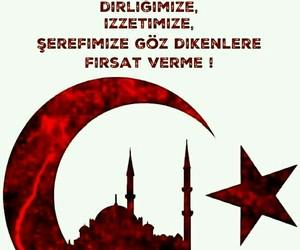 turk and ️️️️turkiye image