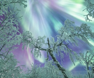 winter, snow, and north light image