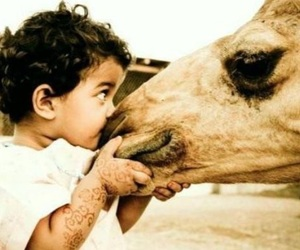 baby and camel image