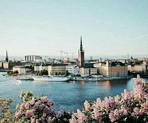 travel, stockholm, and flowers image