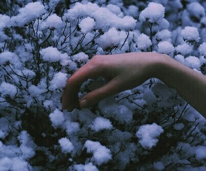 grunge, hand, and flowers image