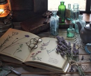 witchcraft, book, and glasses image