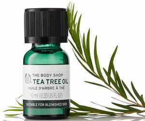 tea tree oil image