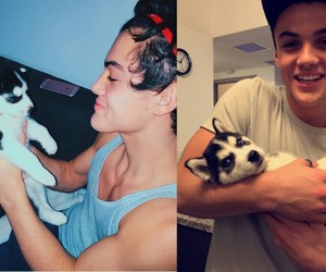 ethan dolan, dolan twins, and puppy image