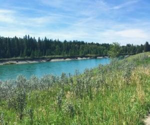 Alberta, grass, and blue image
