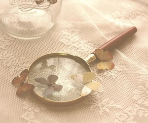 butterfly, magnifying glass, and photography image