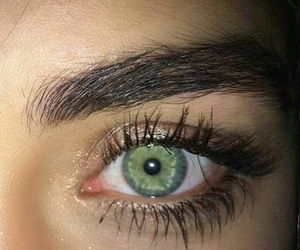eyes, eyebrows, and green image