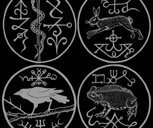 witch symbols animals image