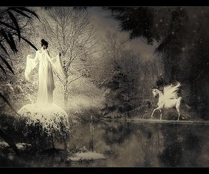 black and white, pegasus, and fantasy image