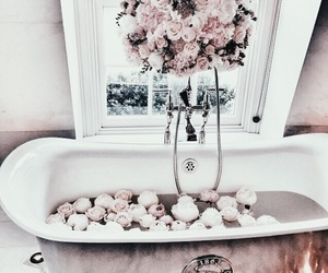 pink, roses, and tub image