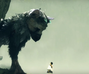 amazing, trico, and cute amazing image