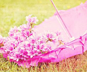 flowers, umbrella, and nature image