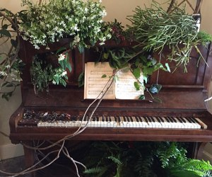 piano, green, and music image