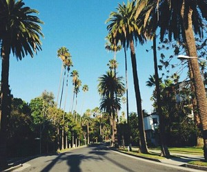 beautiful, california, and picture image