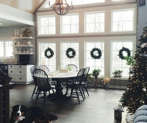 christmas, home, and dog image