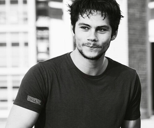hero, smile, and dylan o'brien image