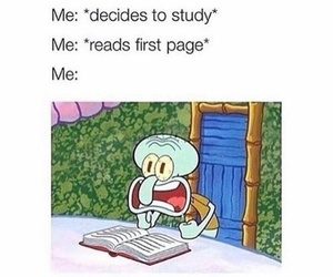 funny, study, and me image