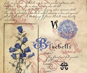 antique, herbs, and potion image