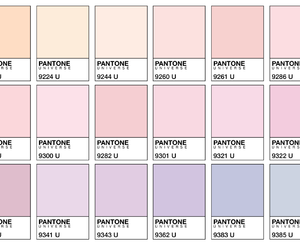 pastel, colors, and pantone image