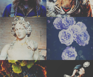 aesthetic, aimee, and dionysus image