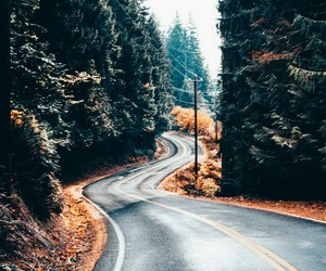 autumn, cool, and travels image