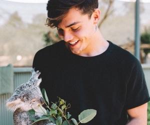 grayson dolan, dolan twins, and Koala image