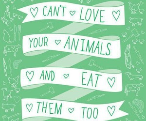 animals, vegan, and love image