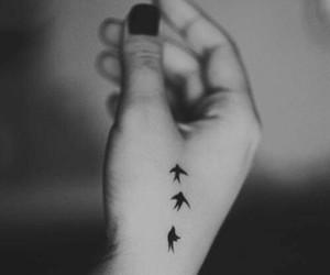 tattoo, bird, and hand image