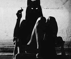 cat, cigarette, and black image