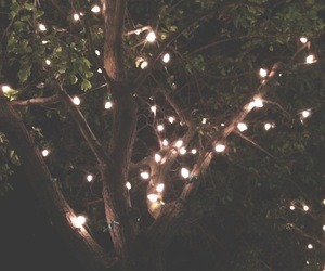 fairy lights, nature, and art image