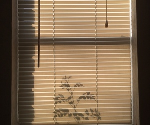 aesthetic, blinds, and day image
