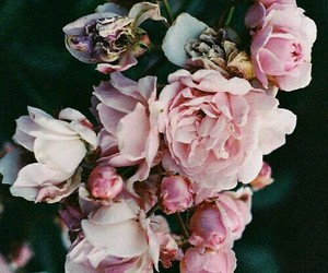 alternative, indie, and flowers image